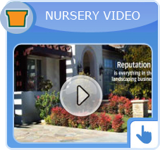 nursery youtube video