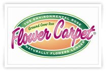 flower carpet logo