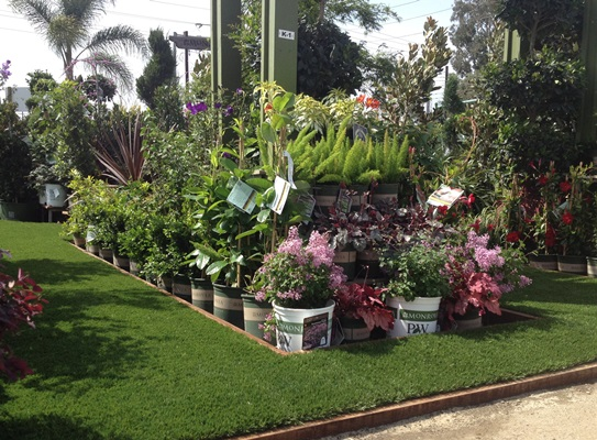 They Would Be Proud To Show You The Large Variety Of Quality Plants Have For All Your Landscaping Needs