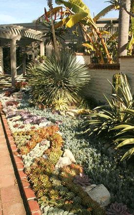 Yard-Landscaping