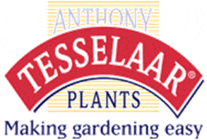 Anthony Tesselaar Plants - Making gardening easy