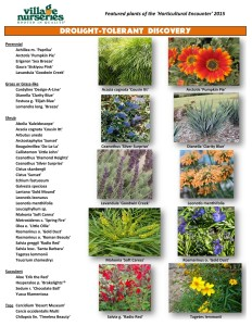 Drought Tolerant Discovery San Diego